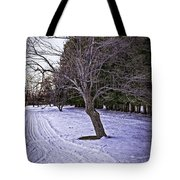 Berkshires Winter 2 - Massachusetts Tote Bag