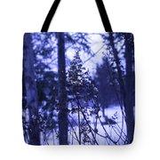 Berkshires Winter 8 - Massachusetts Tote Bag