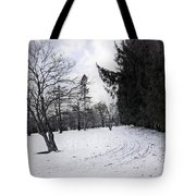 Berkshires Winter 9 - Massachusetts Tote Bag by Madeline Ellis