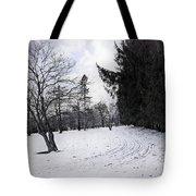 Berkshires Winter 9 - Massachusetts Tote Bag