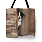 Bernese Mountain Dog At Log Cabin Door Tote Bag
