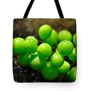 Berries On Water Tote Bag by Kaye Menner