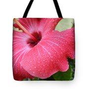 Berry Sprinkle Tote Bag