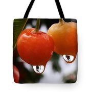 Berry Wet Tote Bag