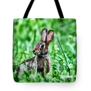 Better Get Started On Those Easter Eggs Tote Bag