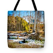Better Re-think That Picnic Tote Bag