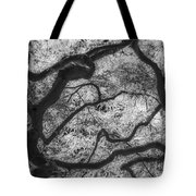 Between Black And White-07 Tote Bag