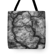 Between Black And White-16 Tote Bag