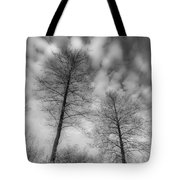 Between Black And White-30 Tote Bag