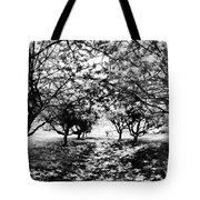 Between Trees II Tote Bag