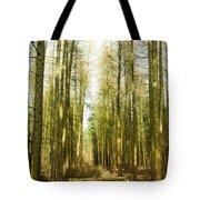 Betweenthe Trees Tote Bag