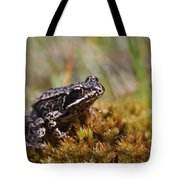 Beutiful Frog On The Moss Tote Bag