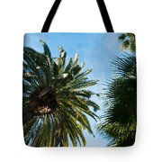 Beverly Palms Tote Bag