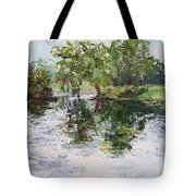 Bevier Park In The Rain Tote Bag
