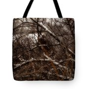 Beyond The Thicket - Abandoned Tote Bag