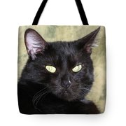Big Bad Voodoo Kitty Tote Bag
