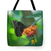 Big Boy Butterfly Tote Bag