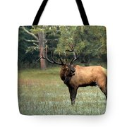 Big Boy Number Sixty-seven Another Year Older Tote Bag
