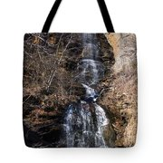 Big Bradley Falls 1 Tote Bag