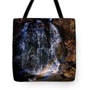 Big Bradley Falls 5 Tote Bag