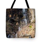 Big Bradley Falls 6 Tote Bag