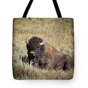 Big Buff - Bison - Buffalo - Yellowstone National Park - Wyoming Tote Bag