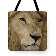 Big Cats 15 Tote Bag