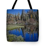 Big Cottonwood Canyon  Tote Bag