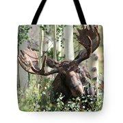Big Daddy The Moose 3 Tote Bag