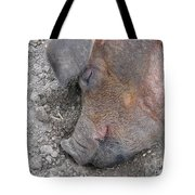 Big Dreamer Tote Bag