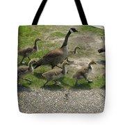 Big Family Crossing The Road Tote Bag