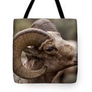 Big Horn Ram   #1503 Tote Bag