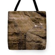 Big Horn Rams   #1546 Tote Bag