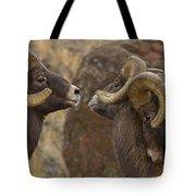Big Horn Rams   #4989 - Signed Tote Bag