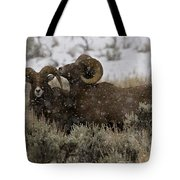 Big Horn Rams In Snow   #2484 Tote Bag