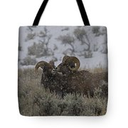 Big Horn Rams In The Snow   #2523 Tote Bag