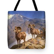 Big Horn Sheep On Wilcox Pass Tote Bag