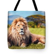 Big Lion Lying On Savannah Grass Tote Bag