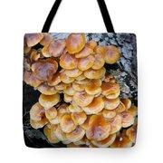 Big Mushrooms Family Tote Bag