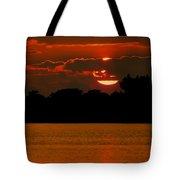 Big Orange Tote Bag