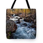 Big Pine Creek Tote Bag by Cat Connor