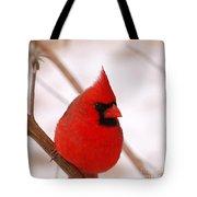 Big Red  Cardinal Bird In Snow Tote Bag