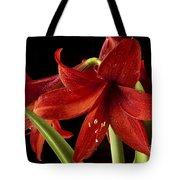 Big Red Tote Bag