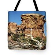 Big Spring Canyon Overlook Tote Bag