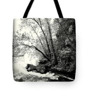 Big Spring In B And W Tote Bag