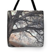 Big Sur Oak Tote Bag