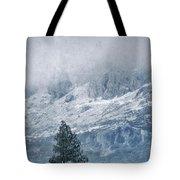Big Tree At The Mountains Tote Bag