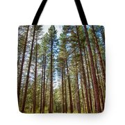 Big Valley Views Mvsta Trail Tote Bag