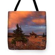 Bighorn Mountains Sunrise Tote Bag