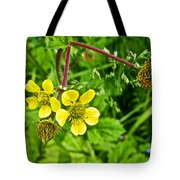 Bigleaf Avens Along Skunk Cabbage Trail In Mount Revelstoke National Park-british Columbia    Tote Bag